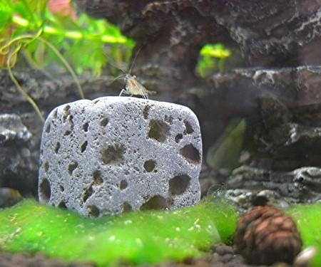 Aquarium Dekoration Steine
